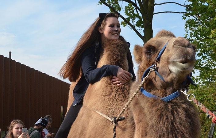 Idraetsdag_2015-Kamel